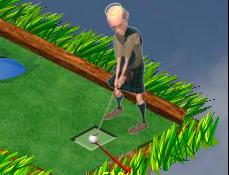 Fantastic Mini Golf