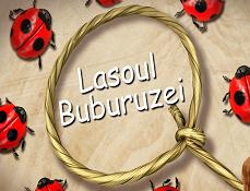 Lasoul Buburuzei