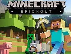Minecraft Sparge Caramizile