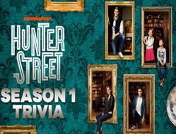 Misterul Familiei Hunter Chestionar