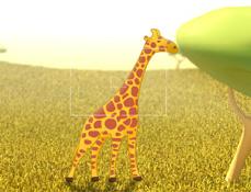 Poze in Safari cu Doki