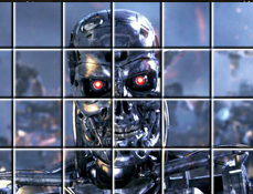 Terminatorul Puzzle