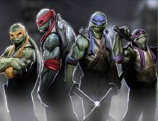 Testoasele Ninja Puzzle