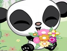 Ursuletii Panda Indragostiti