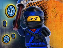 Zborul unui Ninja